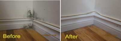 Mold growth on baseboards