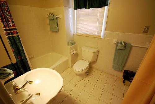 Top Mold-Proof Bathroom Flooring Materials